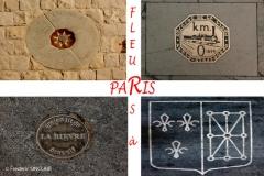 090-Fleurs-à-Paris-T